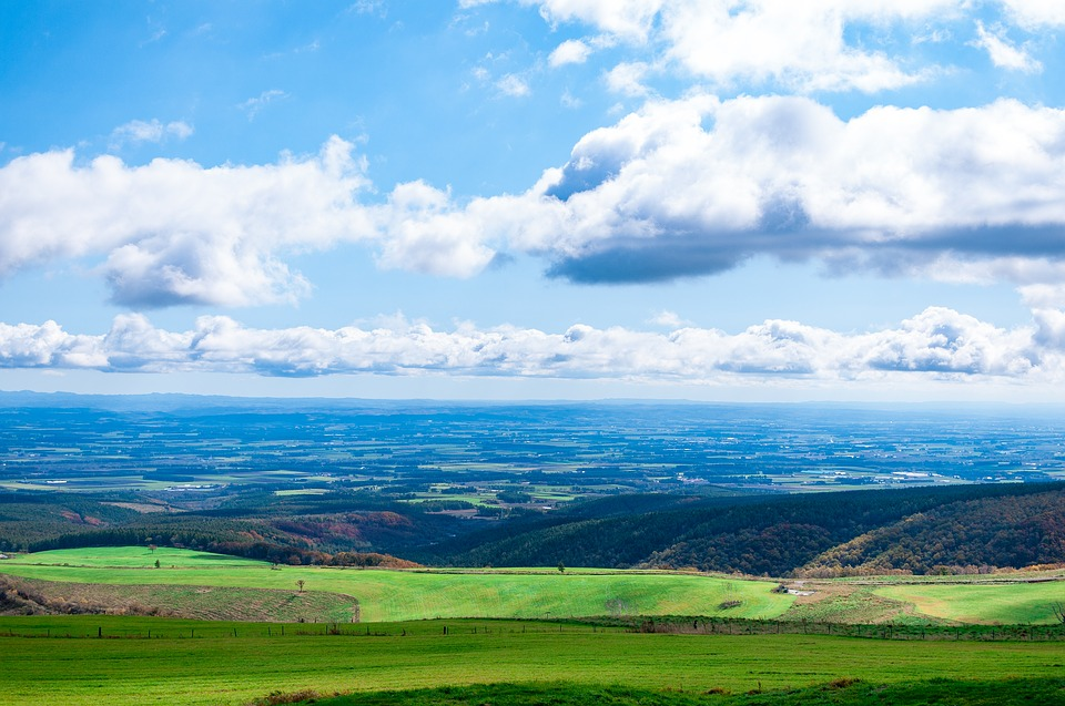 北海道 日本 自然 風景 大地 緑 青空 観光地 丘 草原 観光 広い 夏 新緑
