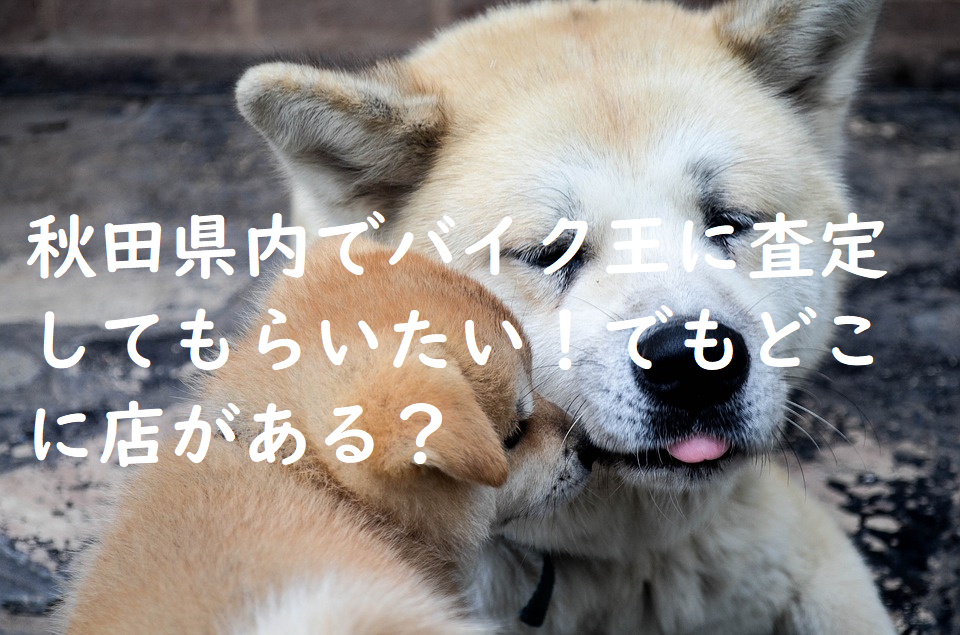 秋田県内でバイク王に査定してもらいたい!でもどこに店がある?